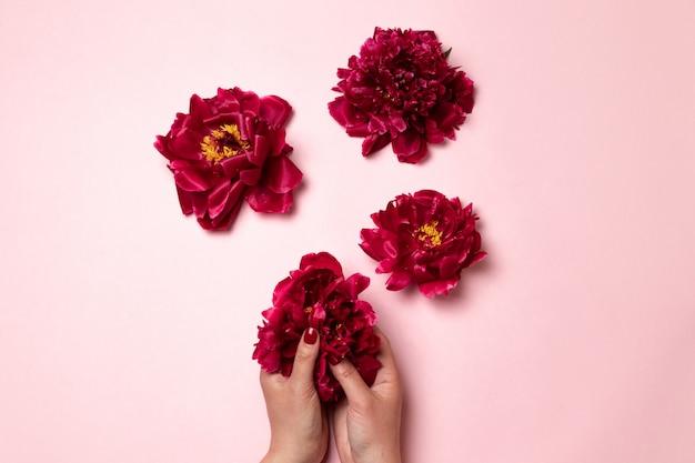 国際婦人デー。女性の体の形をした牡丹の花。 Premium写真