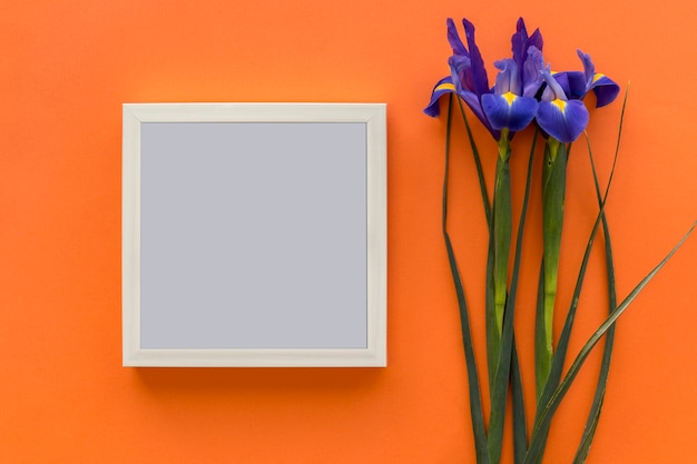 Iris purple flower and black picture frame against bright orange backdrop Free Photo