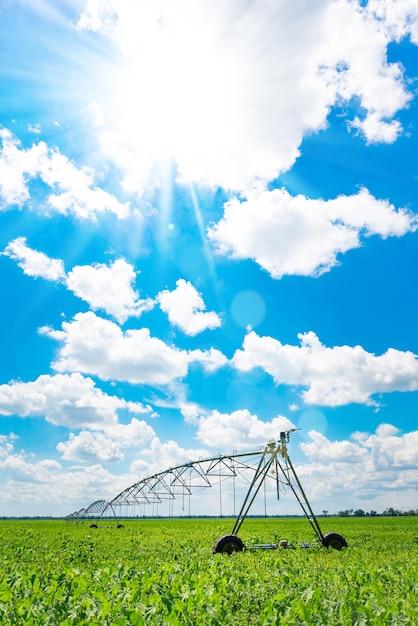Орошение сельхозугодий для обеспечения качества урожая. солнечный день, солнечный свет. Premium Фотографии