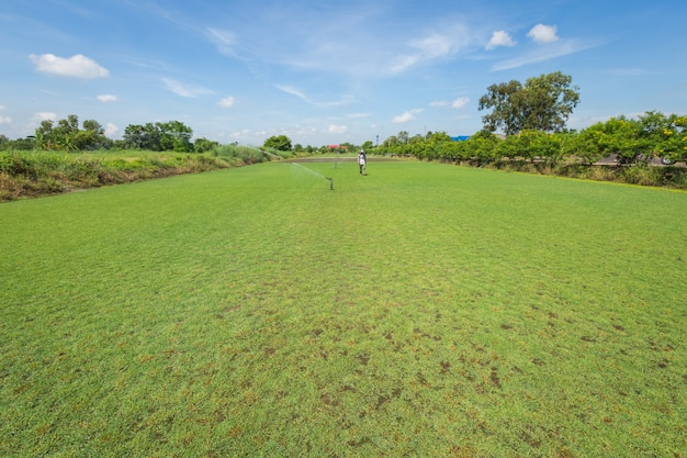 Irrigation system watering the green grass field Premium Photo