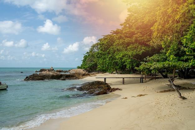 Island ocean, fine sand beach and wave of blue sea Premium Photo