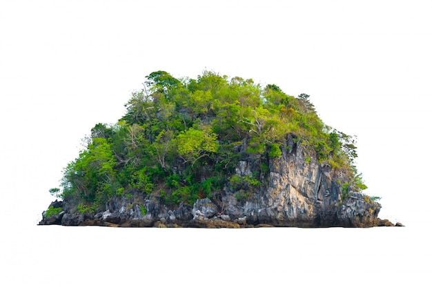 Isolate the island in the middle of the green sea white background separated from the background Premium Photo