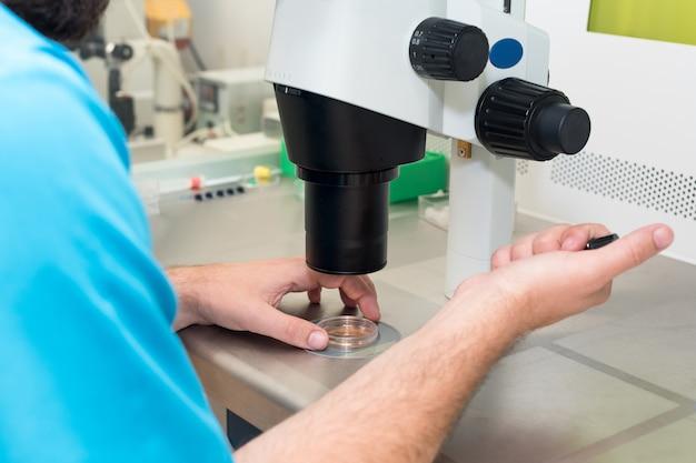 発生学者または検査技師が針を調整して、顕微鏡下で人間の卵子を受精させます。医師が顕微鏡を使用して卵子に精子を追加します。 ivf不妊治療研究所医学のコンセプト。 Premium写真