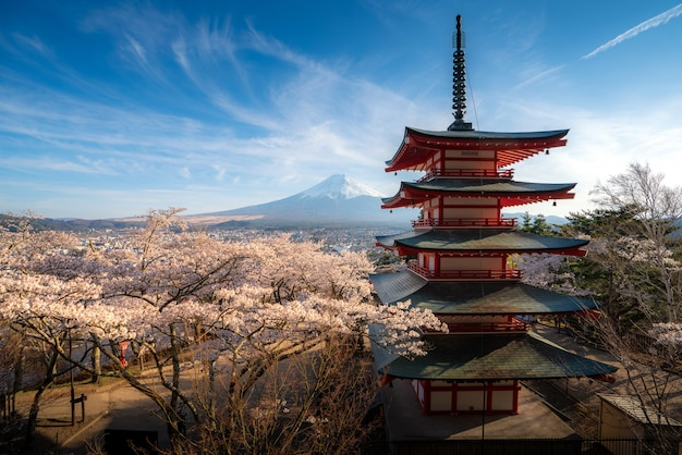 Japan at chureito pagoda and mt. fuji in the spring with cherry blossoms full bloom during sunrise. Premium Photo
