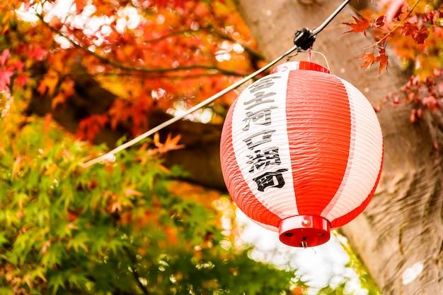 Japan lantern Free Photo
