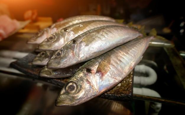 Japanese mackerels fish or aji in japan. Premium Photo