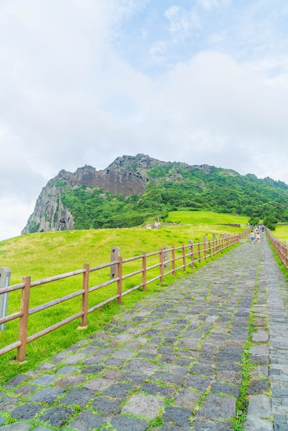 Jeju, korea - july 9, 2017:the tourist visited seongaksan mountain, the famous scenic views in jeju Premium Photo