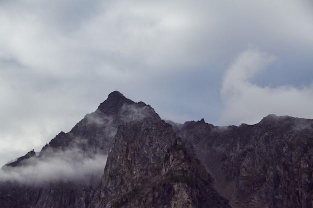 Journey on foot through the mountain valleys, the beauty of wildlife, altai Premium Photo