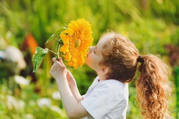Joyful child smell sunflower enjoying nature in summer sunny day. Premium Photo