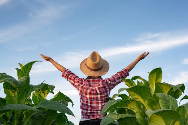 Радостная молодая женщина в табачной плантации. Бесплатные Фотографии