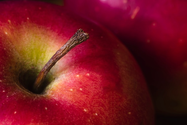 Juicy close-up red fresh apple Free Photo