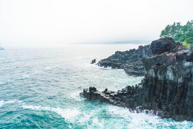 Jungmun daepo coast jusangjeolli cliff, jeju island Premium Photo