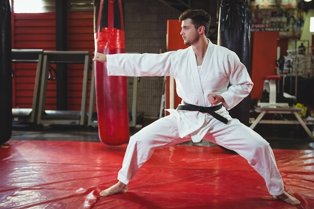 Karate player performing karate stance Free Photo