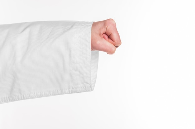 A karate punch on white background Free Photo