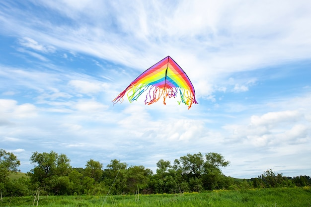 Kite fly on blue sky with white clouds and green field in summer Premium Photo