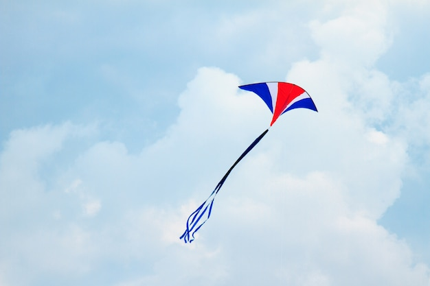 Kite in the sky Premium Photo