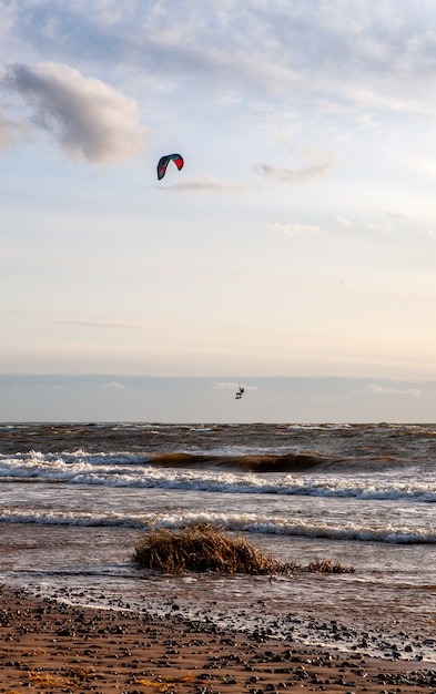 Kite-surfing against a beautiful wind sunset. silhouette of kite in the sky. holidays on nature.  baltic sea, latvija Premium Photo