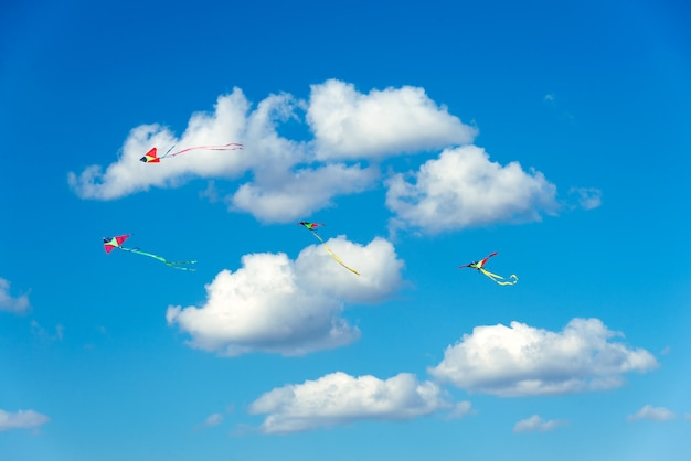Kites flying in the sky, fun and exciting for children Premium Photo