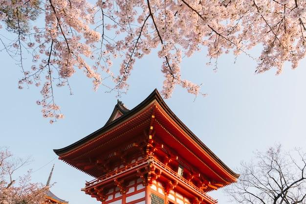 Kiyomizu-dera temple and sakura in japan Free Photo