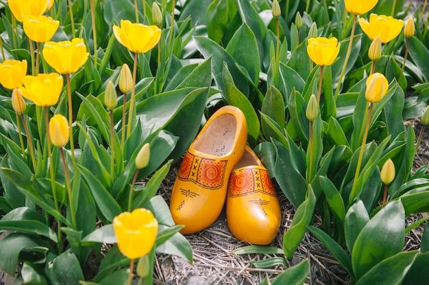 典型的なオランダの国家木造の下駄を閉じます。伝統的なオランダの木製の黄色いklompen靴は黄色いチューリップの花畑の間の地面に立っています。 Premium写真