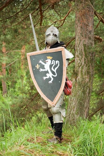 Рыцарь в доспехах Бесплатные Фотографии