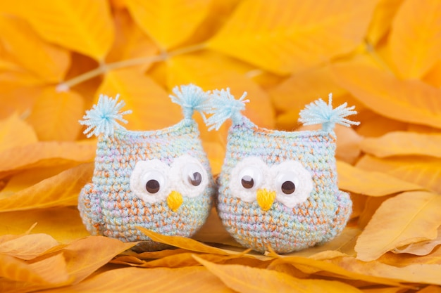 Knitted toys  little owls handmade toy autumn composition Premium Photo
