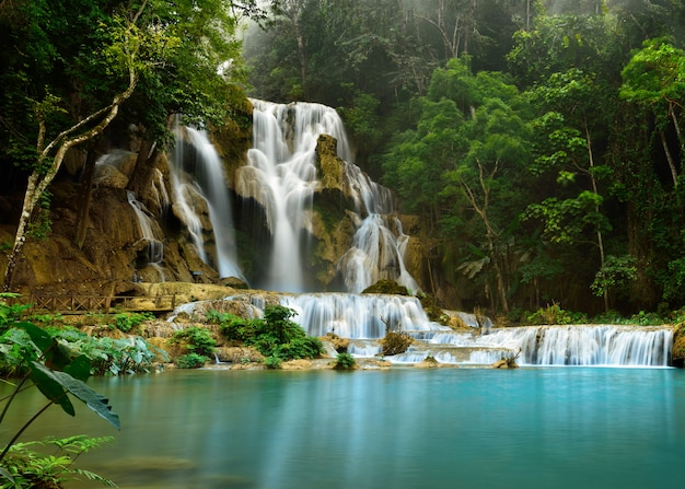 Kuang si waterfall, luang prabang, laos Premium Photo