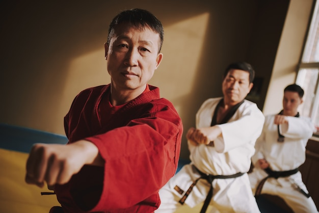 Kung fu lessons with an experienced teacher in the hall. Premium Photo