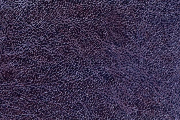 Lacquered dark violet leather texture background, closeup. navy blue backdrop Premium Photo