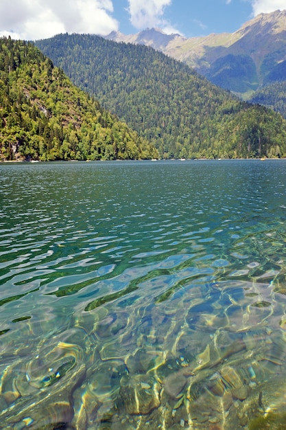 Lake ritsa in mountains in abkhazia in a summer sunny day. the mountain lake of a glacial and tectonic origin on western caucasus, in the gudautsky region of abkhazia. Premium Photo