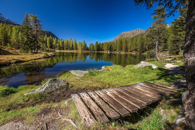 Lake surrounded by rocks and a forest with trees reflecting on the water under a blue sky in italy Free Photo
