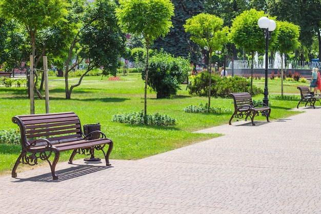 Landscape design of the city park with benches and a fountain. Premium Photo
