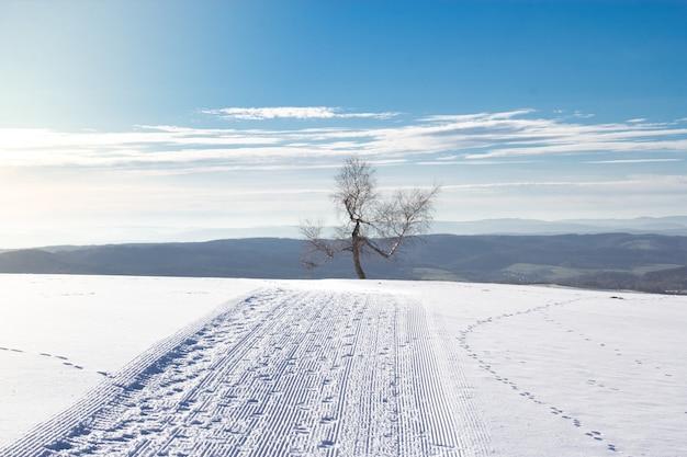 Paesaggio di un campo coperto di neve con colline sotto il sunligh Foto Gratuite