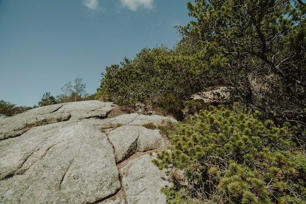 Landscape full of rocky formations Free Photo