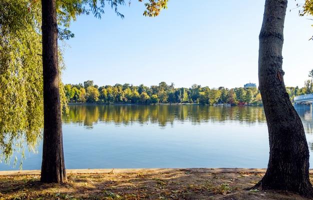 Landscape of herastrau lake Premium Photo