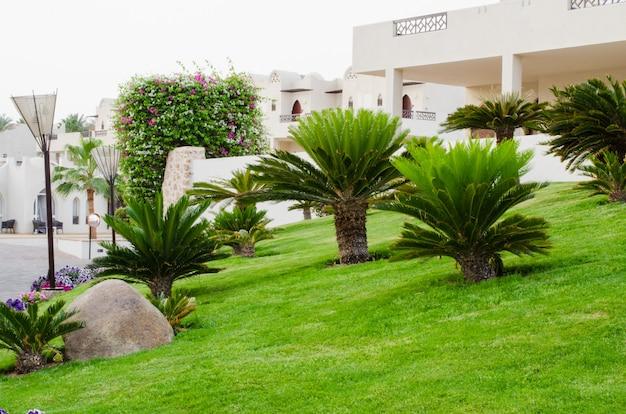 Landscape at hotel territori in sharm el sheikh, egypt Premium Photo
