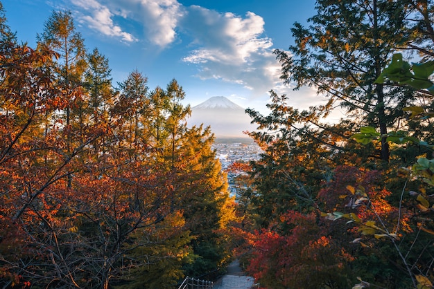 Landscape image of fuji mountain with red leaf in the autumn on sunset at fujiyoshida, japan. Premium Photo