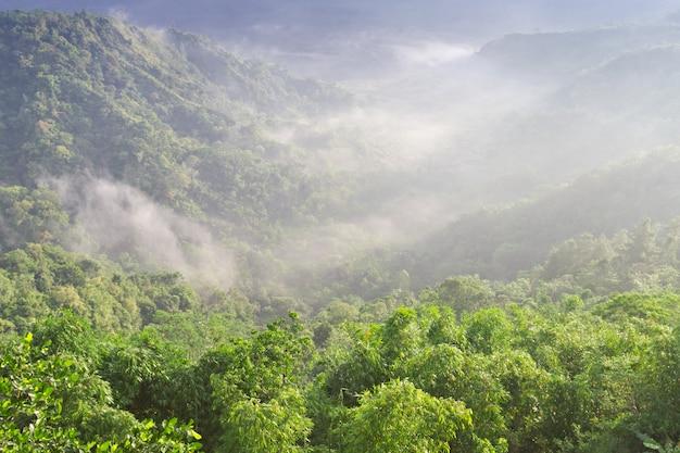 pendakian gunung Burangrang