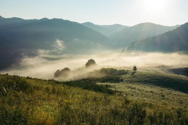 Landscape of morning misty mountains. glare of sun. Premium Photo