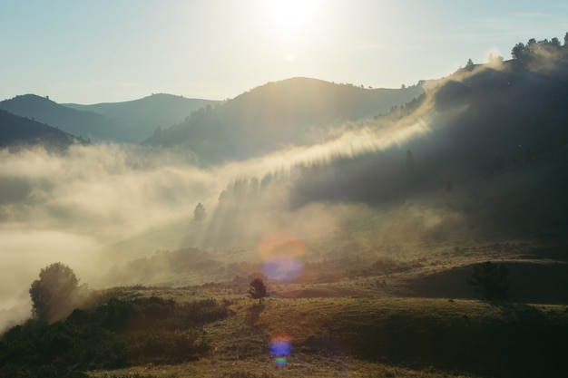Landscape of the morning misty mountains. the magic place of the earth. altai. Premium Photo