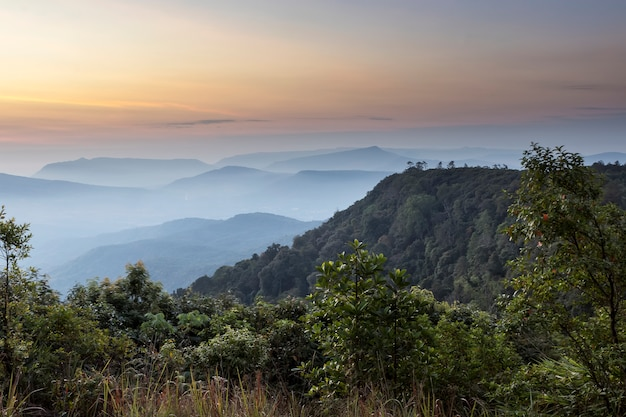 Landscape mountain view sunrise tre with the sky. Premium Photo
