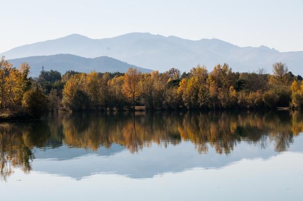 Landscape nature clear colors france pyrenees orientales Premium Photo