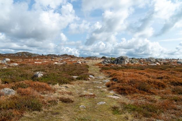 낮에 흐린 하늘 아래 잔디와 바위에 덮여 필드의 풍경 무료 사진