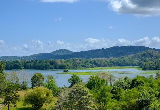 昼間の青空の下、緑に覆われた丘に囲まれた湖の風景 無料写真