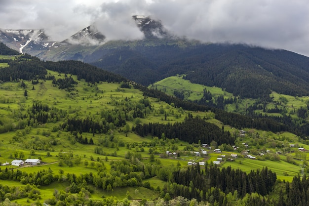 Пейзаж холмов, покрытых лесами, снегом и туманом под облачным небом в дневное время Бесплатные Фотографии
