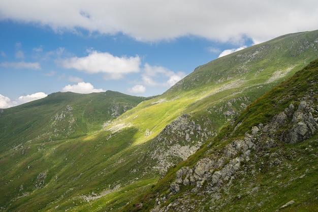 曇り空と日中の日光の下で草と木で覆われた丘の風景 無料写真