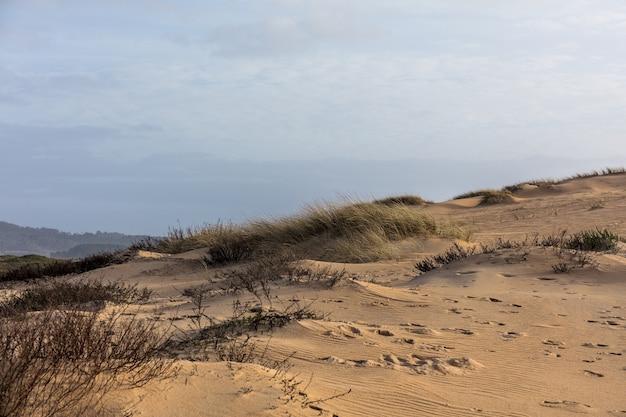 日光と曇り空の下で草と砂に覆われた丘の風景 無料写真