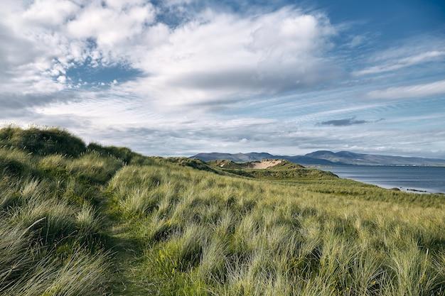 아일랜드의 Rossbeigh Strand와 바다로 둘러싸인 잔디로 덮인 언덕의 풍경 무료 사진