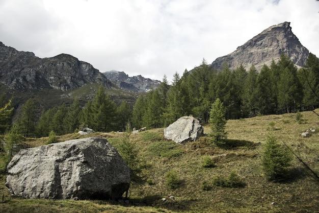昼間の曇り空の下で緑に囲まれた岩の風景 無料写真