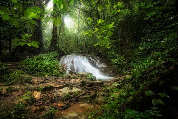 深い熱帯のジャングルの滝の風景 Premium写真